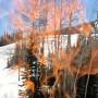 Ski resort season summary