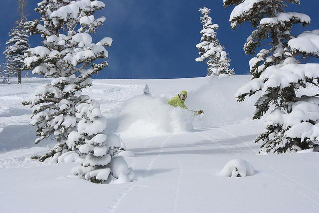 Snowboarding in Utah powder
