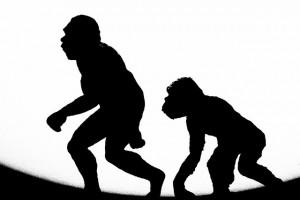 141013-evolve